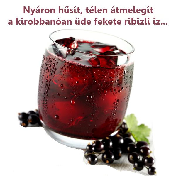 fekete-ribizli-tea-eletso